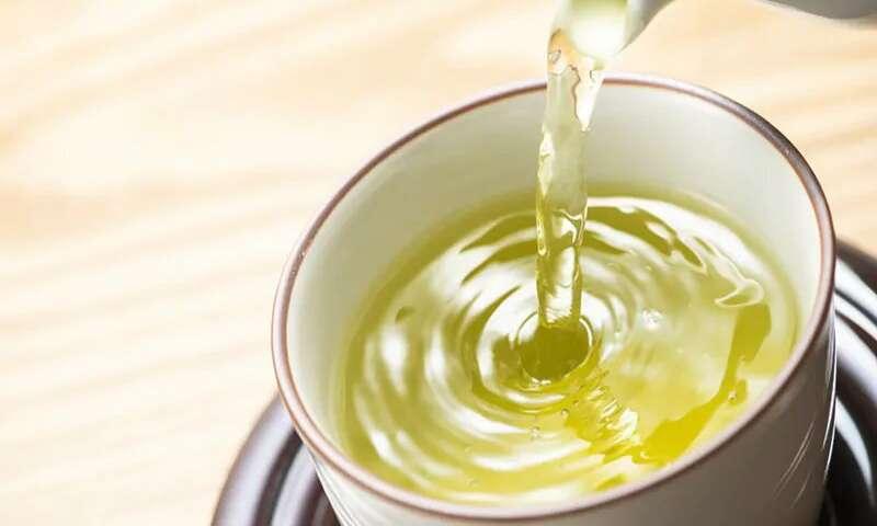 【健康饮食】绿茶当水饮? 随时加重骨质疏鬆病症!